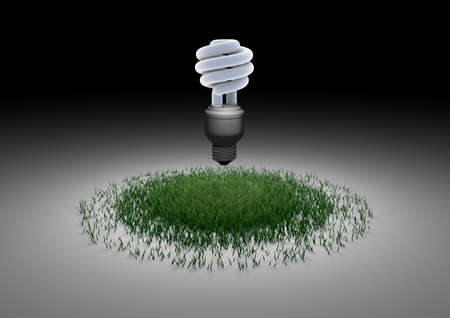 eco-friendly light bulb photo