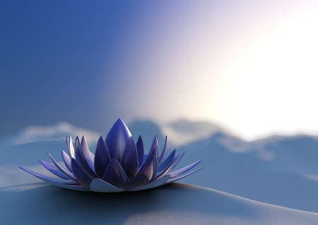 Winter zen flower Stock Photo