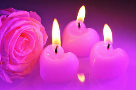 cordiality: three luminous pink candlehearts with pink rose in purple light