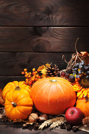 red maple leaf: Thanksgiving ? different pumpkins with nuts, berries and grain in front of wooden boards Stock Photo