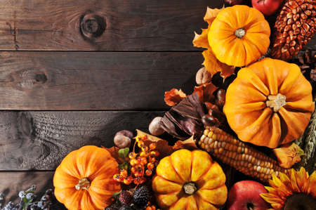 Thanksgiving - different pumpkins with nuts, berries, maize-cob and grain on wooden floor with copyspace Stock Photo