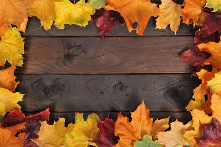 old wood floor: original autumn foliage in different colors on wooden floor