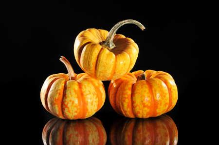mirroring: three halloween pumpkins on black mirroring background