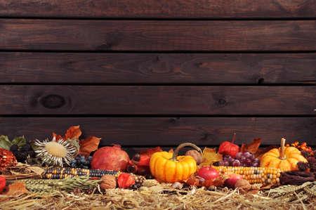 感恩 - 舊風化木板與COPYSPACE前對秸稈許多不同的南瓜 版權商用圖片