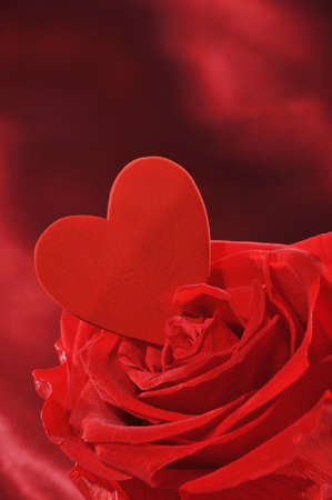 cordiality: Red heart in red rose on red satin background