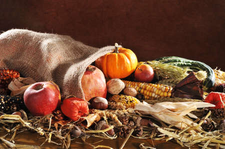 crop harvest: Thanksgiving - different pumpkins, maize-cob, apples and grain in jute bag on straw with copy space in front of brown background Stock Photo