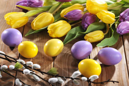 pussy yellow: violet and yellow easter eggs with tulips and pussy willow Stock Photo