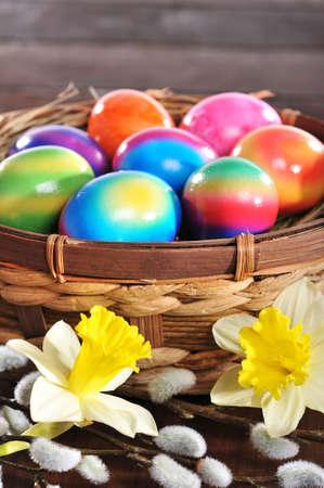 Pasen nest met gekleurde kip? S eieren, narcissen en pussy wilg op een houten bord