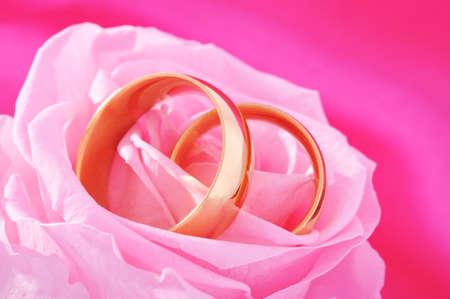 agradecimiento: Dos anillos de oro en rosa rosa en el fondo de sat�n rosa Foto de archivo