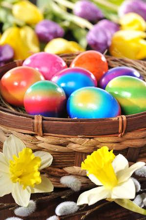 Pasen nest met gekleurde kip? S eieren, narcissen, tulpen en pussy wilg op houten bord Stockfoto