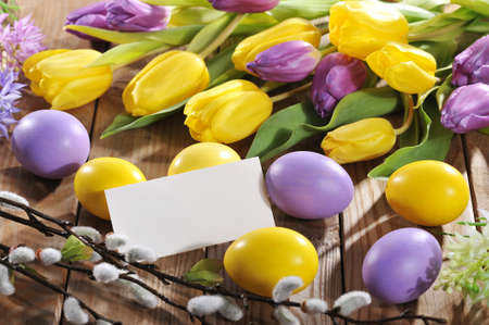 pussy yellow: violet and yellow easter eggs with card, tulip, hyacinth and pussy willow