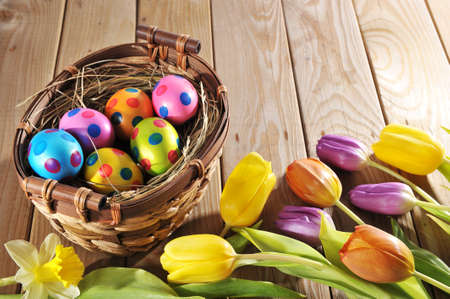 hen's: Easter basket with colored hen? S eggs, narcissus and tulips on wooden board Stock Photo