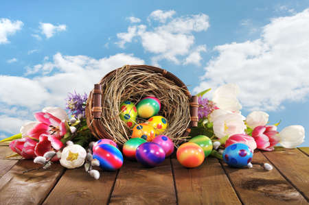 hen's: Easter basket with many colored hen? S eggs, tulip, hyacinth and catkin on old wooden board Stock Photo