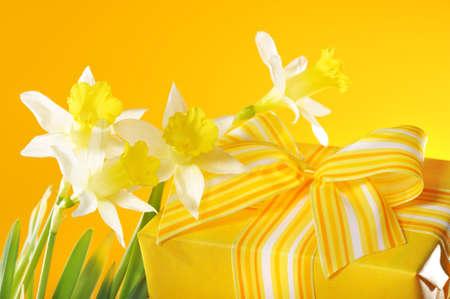 geel aanwezig zijn met lus en vier narcissen