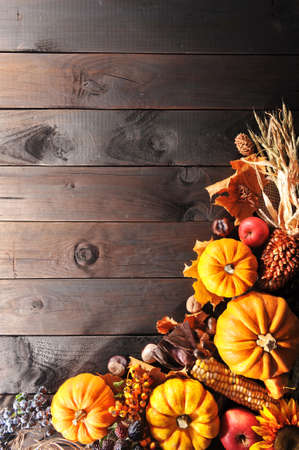 Thanksgiving - different pumpkins with nuts, berries, maize-cob and grain on wooden floor