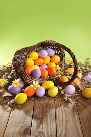 hen's: Easter Basket with easter eggs, narcissus and catkin on old weathered wooden board