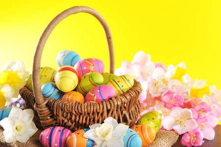 Easter basket with many painted easter eggs, narcissus