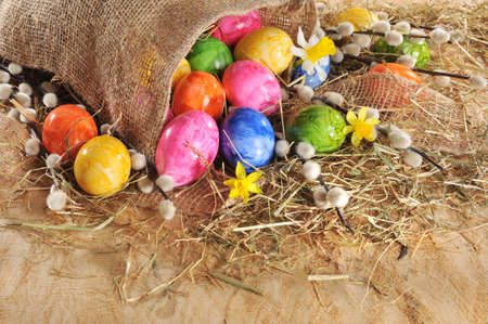 hen's: Easter eggs in jute bag with narcissus and catkin on wooden board