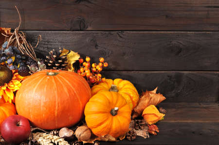 Thanksgiving - different pumpkins with nuts, berries and grain in front of wooden boards Banco de Imagens
