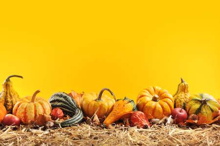感恩 - 在橙色背景COPYSPACE前稻草許多不同的南瓜