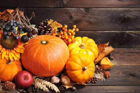 cucurbit: Thanksgiving - different pumpkins with nuts, berries and grain in front of wooden boards Stock Photo