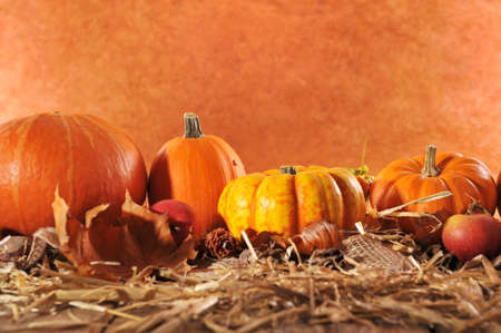 Halloween Viele verschiedene Kürbisse auf Stroh vor braunem Hintergrund mit Kopie Raum