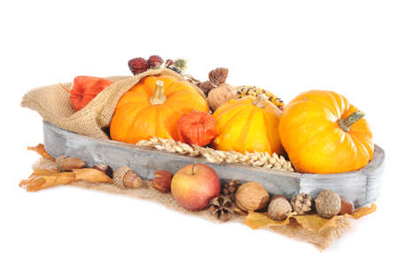 mealie: Thanksgiving pumpkins different apple berries nuts and grain on jute bag in wood basket on white background Stock Photo