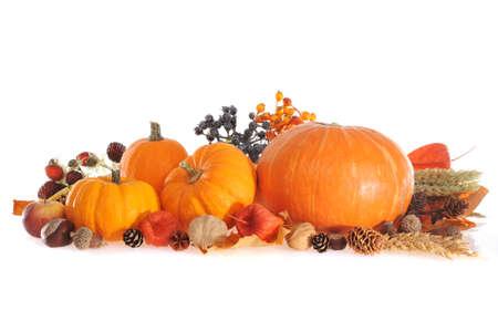 Thanksgiving-Kürbisse verschiedenen Apfel Beeren Nüsse und Getreide auf weißem Hintergrund