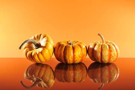 cucurbit: Three halloween pumpkins on orange background mirroring