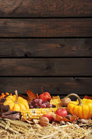 harvest time: Thanksgiving vegetable and fruits on straw in front of old weathered wooden boards with copyspace