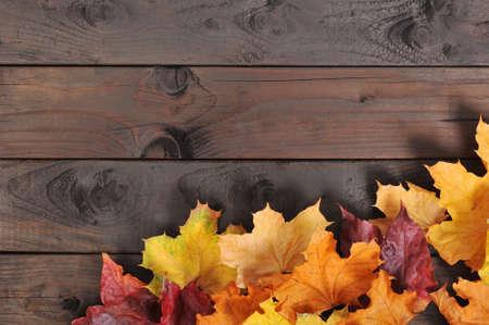Original follaje de otoño en diferentes colores en el piso de madera Foto de archivo
