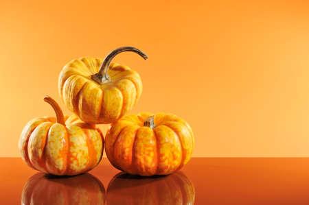 mirroring: Three halloween pumpkins on orange background mirroring