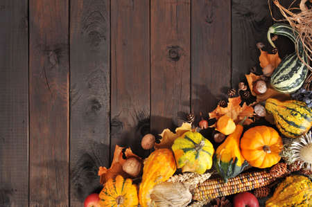 corn flower: Thanksgiving - different pumpkins with nuts, berries, maize-cob and grain on wooden floor with copy space Stock Photo