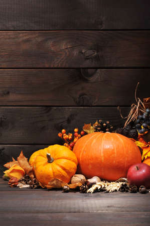 Thanksgiving - different pumpkins with nuts, berries and grain in front of wooden boards Standard-Bild