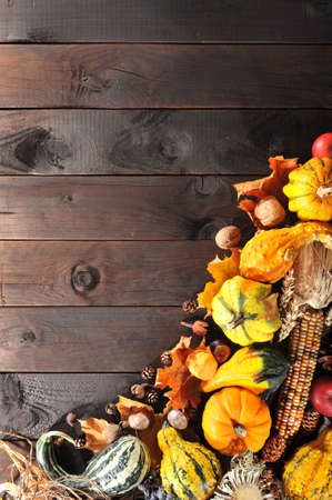 ash gourd: Thanksgiving - different pumpkins with nuts, berries, maize-cob and grain on wooden floor with copy space Stock Photo