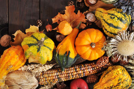 ash gourd: Thanksgiving - different pumpkins with nuts, berries, maize-cob and grain on wooden floor