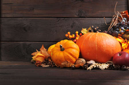 christendom: Thanksgiving - different pumpkins with nuts, berries and grain in front of wooden board
