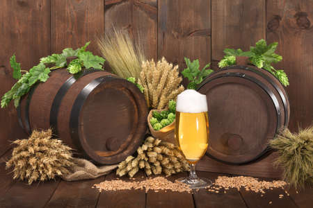 beerglass: Two beer barrels with beer glass, hops, wheat, grain, barley and malt