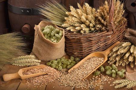 兩個桶啤酒啤酒花,小麥,穀物,大麥和麥芽 版權商用圖片 - 49139648