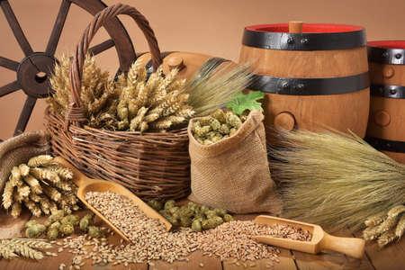 cebada: Tres barriles de cerveza con lúpulo, trigo, grano, cebada y malta