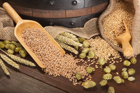 barley malt: beer barrel with hops, wheat, grain, barley and malt Stock Photo