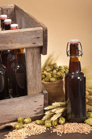 beer bottle: beer crate and beer bottle with hops, wheat, grain, barley and malt