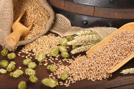 beer barrel with hops, wheat, grain, barley and malt Stok Fotoğraf
