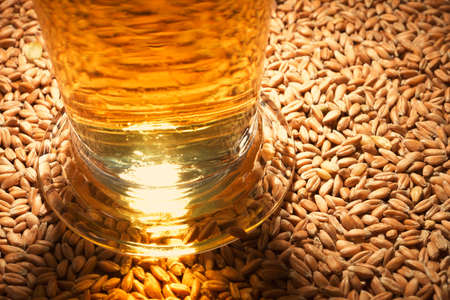 barley malt: macro view of a beer glass with wheat, grain, barley, malt Stock Photo