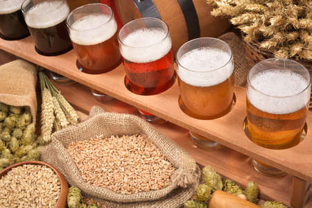 beerglass: beer crate with many different beers, hops, wheat, grain, barley and malt