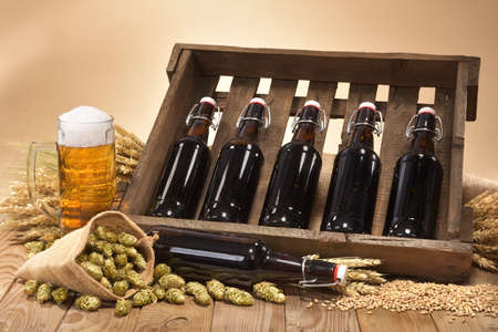 beer crate and beer glass with hops, wheat, grain, barley and malt Stock Photo