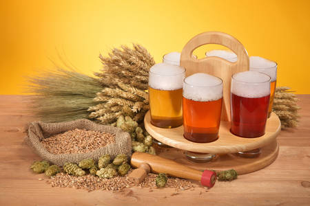 beerglass: beer crate and beer glasses with hops, wheat, grain, barley and malt