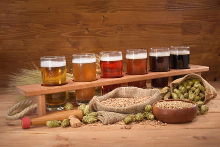 barley malt: beer crate with many different beers, hops, wheat, grain, barley and malt