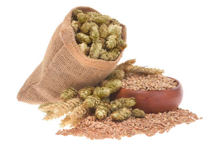 beer ingredients ? ? hops, wheat, grain, barley and malt isolated on white