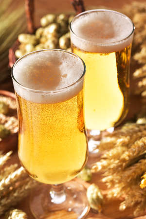 Two beer glasses with hops, wheat, grain, barley and malt Stock Photo